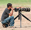 Satyendra Sharma, Professional wildlife photographer